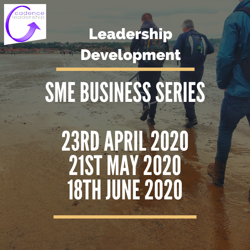 SME Leadership Series